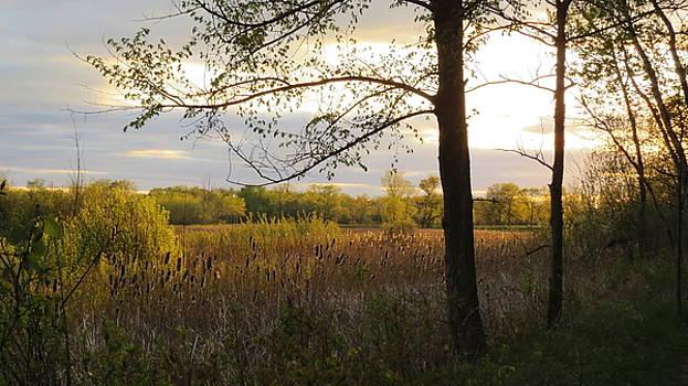 Sunset at Scuppernong II by Kimberly Mackowski