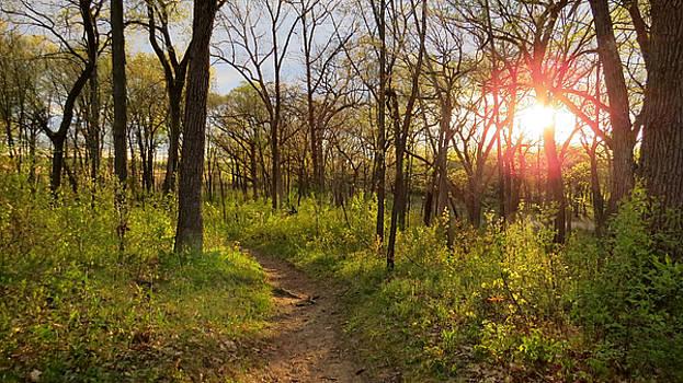 Sunset at Scuppernong by Kimberly Mackowski
