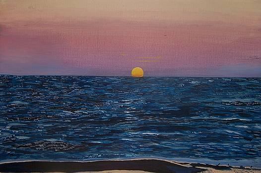 Sunset at Siesta Key Beach by William Demboski