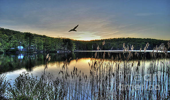 Sunset At Sterling Lake by Guy Harnett