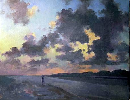 Sunset at the Beach by Anne Lattimore