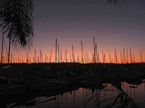 Sunset at the Marina by Kelly E Schultz