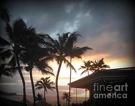 Sunset at Turtle Bay by Joy Patzner