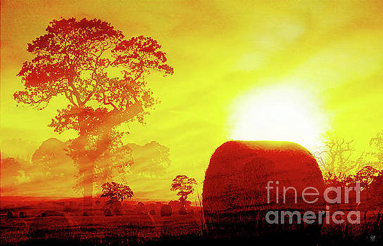 Sunset Bales by Neil Finnemore
