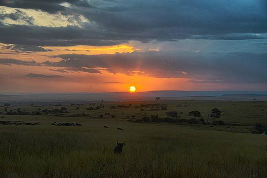 Sunset by Balram Panikkaserry