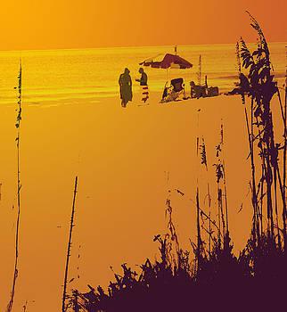 Ian  MacDonald - Sunset Beach