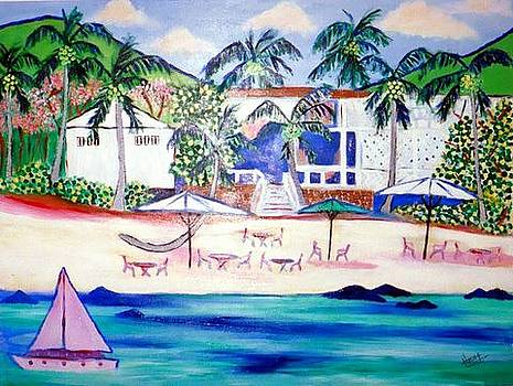 Sunset Beach St Croix by Ted Hebbler