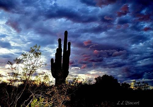 Sunset Blues by L L Stewart