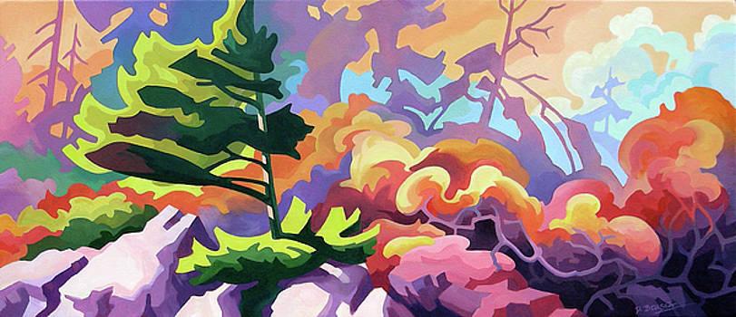 Sunset Blufff by Dianne Bersea