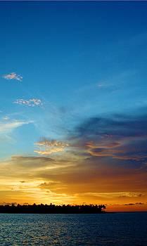 Sunset Celebration at Key West by Sheryl Unwin