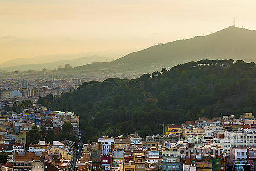 Svetlana Sewell - Sunset City
