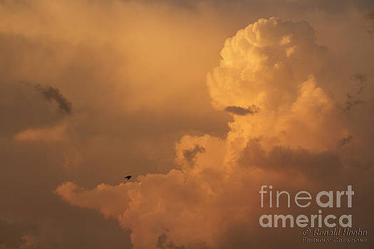 Sunset Clouds 01 by Ronald Hoehn