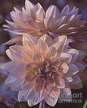 Sunset Dahlia by Kathleen Struckle