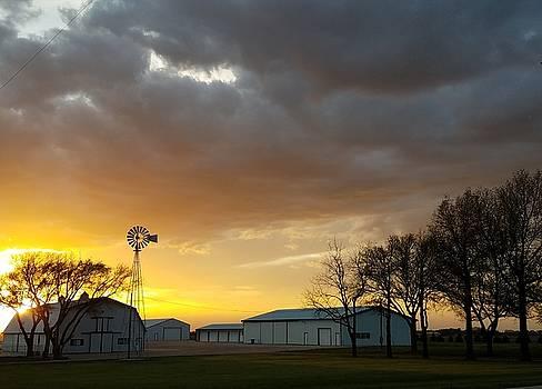 Sunset Farm by Caryl J Bohn