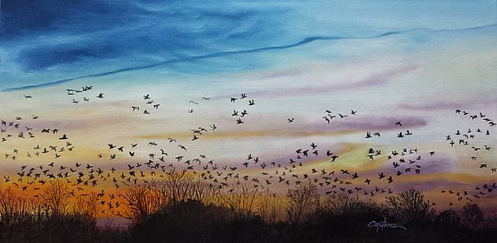 Sunset Flight by Connie Rowsell