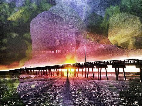 Sunset Flower by Kevin Blackburn