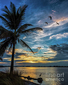 Sunset from bird key by Damon Powers