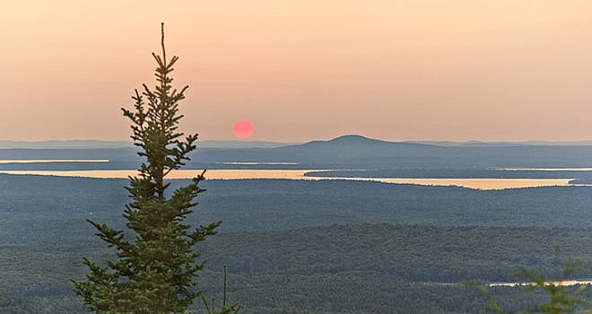 Sunset from Cadillac Mountain by Peter J Sucy