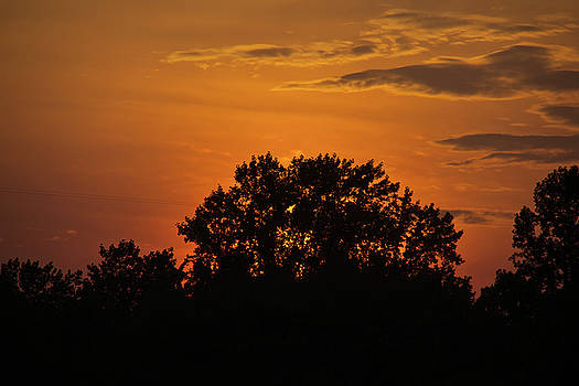 Sunset Glow by Nils Creque