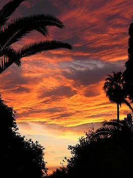 Sunset God's Fingers in clouds  by Diane Greco-Lesser