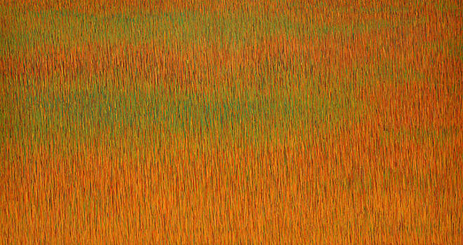 Sunset Grassland by Kenneth Ober