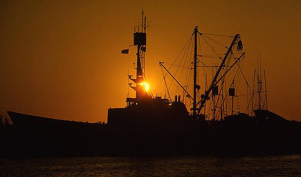 Sunset Harbor by Marie Leslie