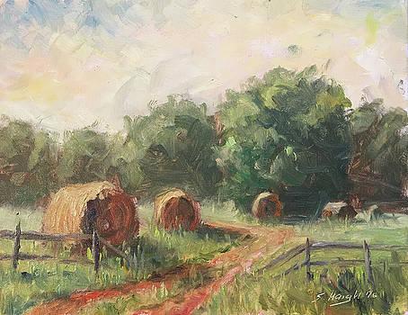 Sunset Hay Bales by Steve Haigh