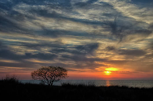 Sunset Headlands Beach by Paul Cimino