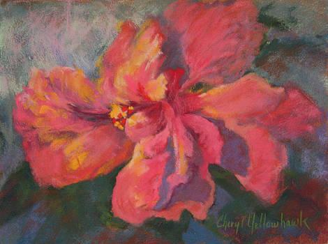 Flaming Hibiscus by Cheryl Yellowhawk