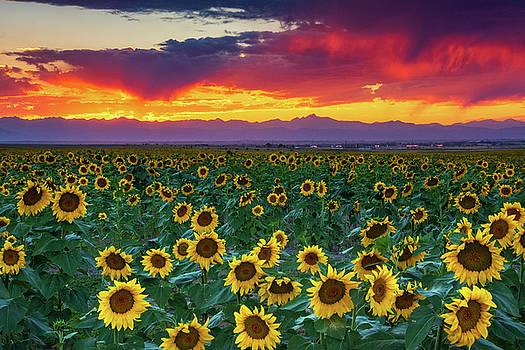 Sunset Hour by John De Bord