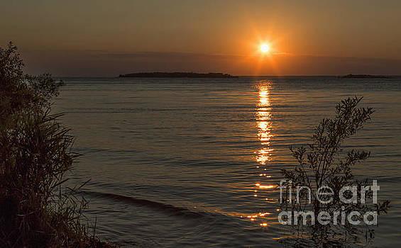 Sunset I by Margie Hurwich