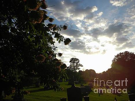 Sunset in a Cemetery by Kristy Evans