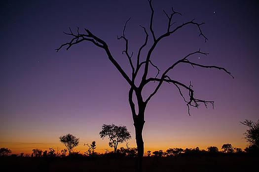 Sunset in Africa by Matt Cohen