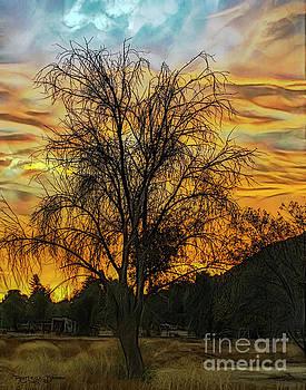 Sunset in Perris by Rhonda Strickland