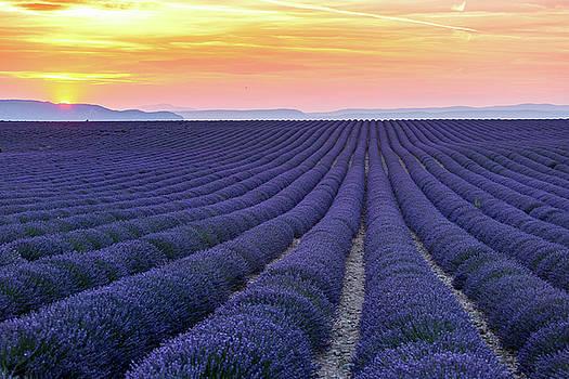 Francesco Riccardo Iacomino - Sunset in Provence