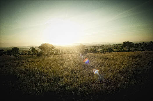Sunset in Tanzania by Justin Carrasquillo
