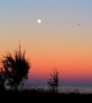 Sunset In The Beach by Maria Preibsch