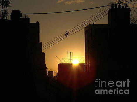 Sunset in the city by Cybele Chaves