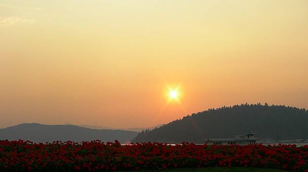 Sunset in the Idaho Panhandle  by Peter  McIntosh