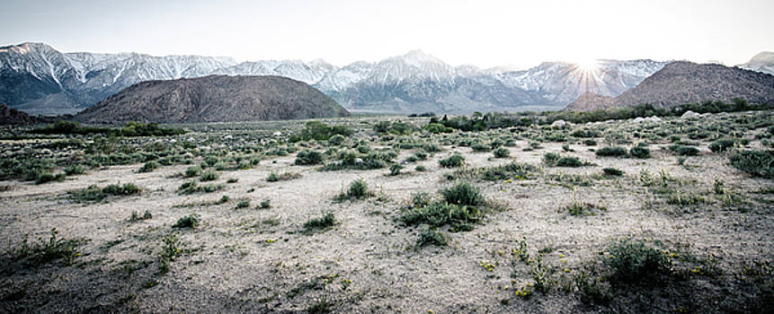 Margaret Pitcher - Sunset in the Sierras