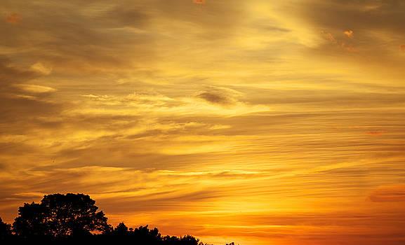 Sunset by John Daly