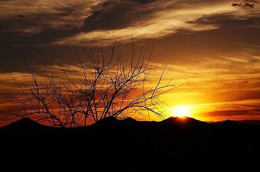 Sunset by Joseph Frank Baraba