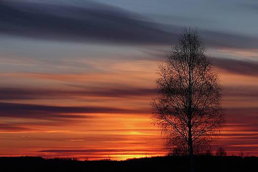 Sunset by Julenka Fominykh