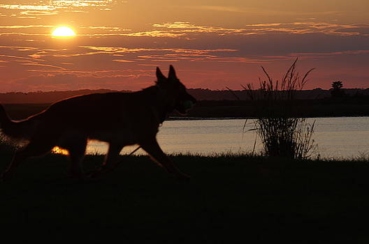 Sunset Lake by Greg Graham