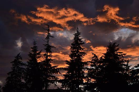 Sunset by Larry Poulsen