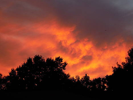 Sunset Leaving in Flames by Amanda Romer