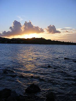 Sunset Magic Sapphire Beach Virgin Islands by Elena Tudor
