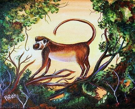 Sunset monkey by Patricia Piffath