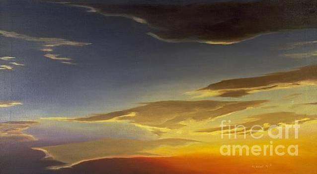 Sunset near Rowlett by Mary Erbert