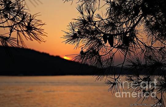 Sunset by Olivia Narius